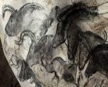 Пещера забытых снов / Cave of Forgotten Dreams (2010/DVD5)